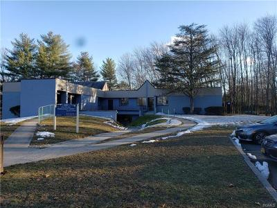 Commercial For Sale: 100 Phillips Hill Road