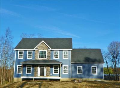 Dutchess County Single Family Home For Sale: 1 Padasana Lot 1 Court