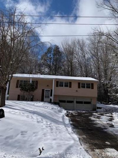 Neversink, Grahamsville, Denning Single Family Home For Sale: 14 Birch Road