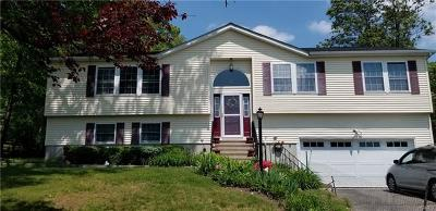 Cortlandt Manor Single Family Home For Sale: 25 Ely Road