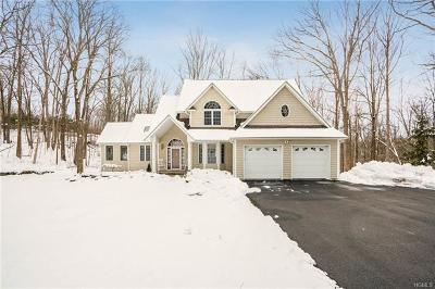 Dutchess County Single Family Home For Sale: 19 Edward Road