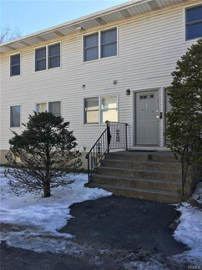 Rockland County Condo/Townhouse For Sale: 119 Adar Court