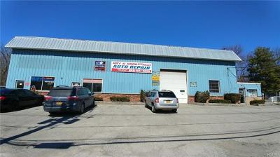 Newburgh Commercial For Sale: 272 Route 17k