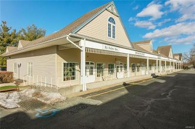 Stony Point Commercial For Sale: 18 Liberty Square