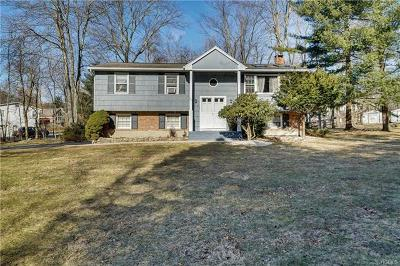 Rockland County Single Family Home For Sale: 40 Smith Hill Road