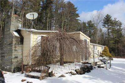 Glen Spey NY Single Family Home For Sale: $49,500