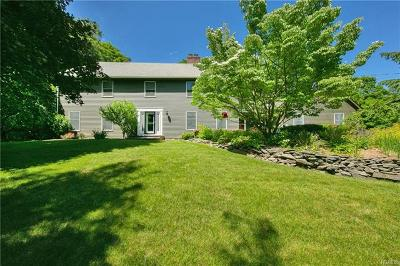 Orange County Single Family Home For Sale: 715 State Route 32