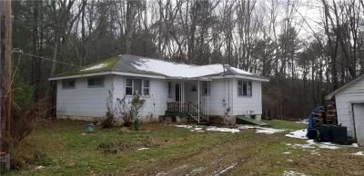 Rock Hill NY Single Family Home For Sale: $49,900