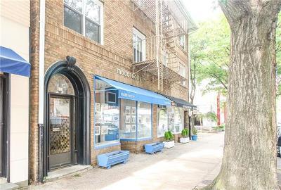 Pelham Rental For Rent: 153 Fifth Avenue #10