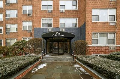 White Plains Condo/Townhouse For Sale: 10 Lake Street #4D