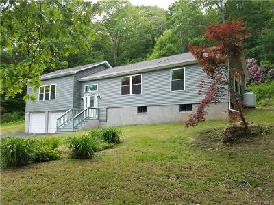 Stormville Single Family Home For Sale: 486 Stormville Mountain Road