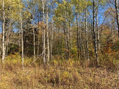Delaware County Residential Lots & Land For Sale: Row Off Methol Road