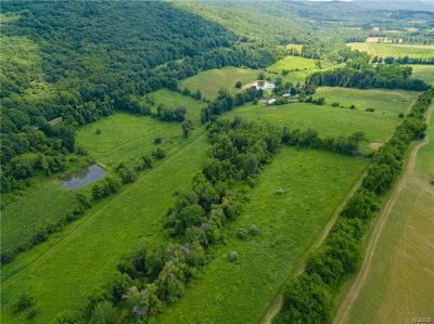 Dutchess County Single Family Home For Sale: 131 Frog Hollow Road