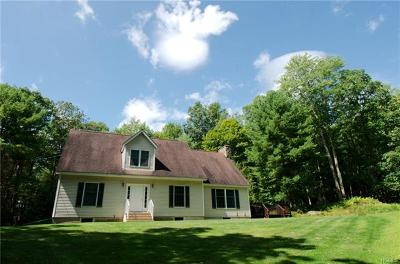 Sullivan County Single Family Home For Sale: 82 Mathias Weiden Drive