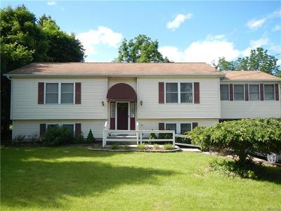 Walden Single Family Home For Sale: 8 Liberty Street