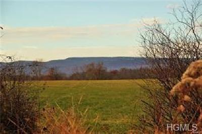 Dutchess County, Orange County, Sullivan County, Ulster County Residential Lots & Land For Sale: 184 River Road