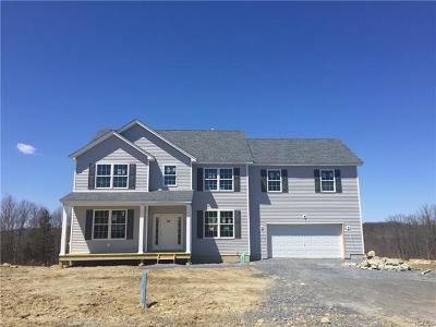 Dutchess County Single Family Home For Sale: 120 Kensington Lane