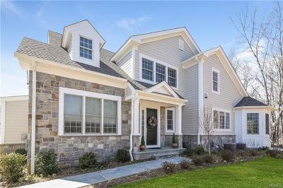 Rye Brook Single Family Home For Sale: 16 Carol Court