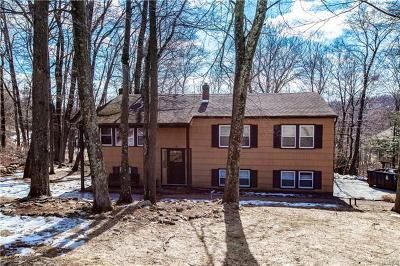 Putnam County Single Family Home For Sale: 66 Plum Road