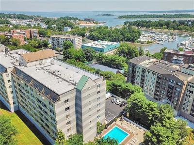 New Rochelle Condo/Townhouse For Sale: 701 Pelham Road #PH5