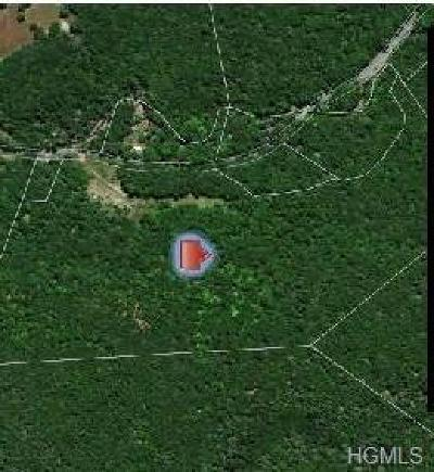 Wurtsboro Residential Lots & Land For Sale: Pine Kill Road