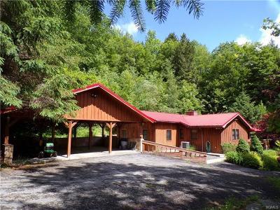 Delaware County Single Family Home For Sale: 161 Readburn Road