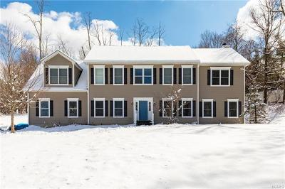 Dutchess County Single Family Home For Sale: 196 East Hook Road