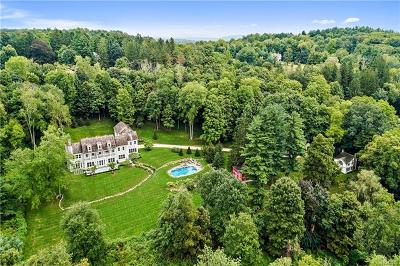 Katonah Single Family Home For Sale: 256 Mount Holly Road