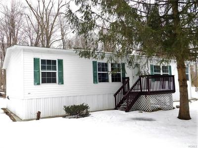 Single Family Home For Sale: 753 State Route 44 55