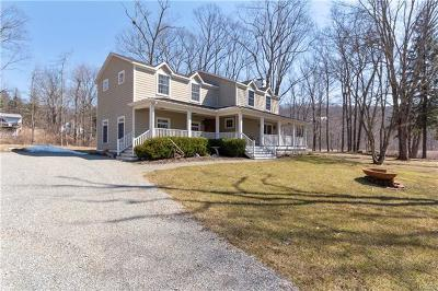 Putnam County Single Family Home For Sale: 54 Travis Corners Road