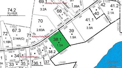 Sullivan County Commercial For Sale: 38.1 Katrina Falls Road