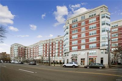 White Plains Condo/Townhouse For Sale: 300 Mamaroneck Avenue #310