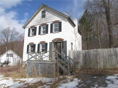 Wallkill Single Family Home For Sale: 317 East Road