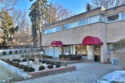 Tarrytown Commercial For Sale: 200 South Broadway #102