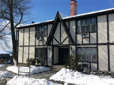 Rockland County Condo/Townhouse For Sale: 709 Sierra Vista Lane
