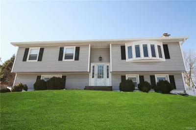 Fishkill Single Family Home For Sale: 15 Salem Road
