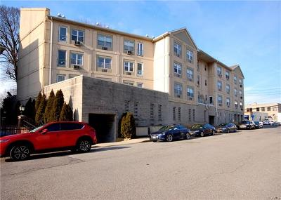 Westchester County Condo/Townhouse For Sale: 400 Mount Pleasant Avenue #2G