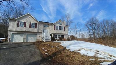 Pine Bush Single Family Home For Sale: 5034 Searsville Road