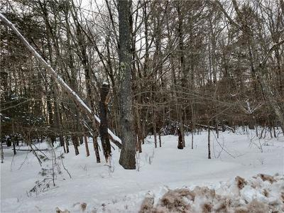 Residential Lots & Land For Sale: 392 Pine Grove Road Tr 45