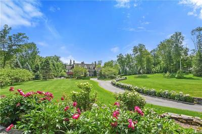 Bedford Hills Single Family Home For Sale: 54 Bedford Center Road