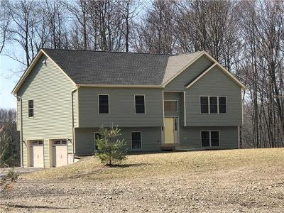 Sullivan County Single Family Home For Sale: 14 Roe Road