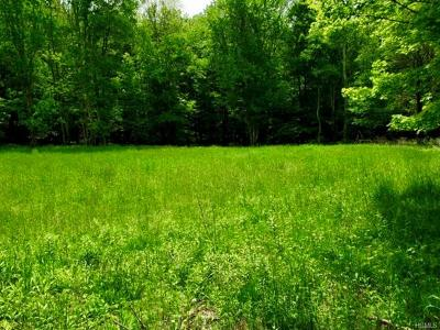 Residential Lots & Land For Sale: Old White Lake Turnpike Tr 101