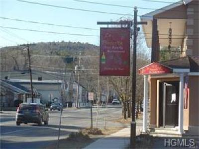 Wurtsboro Rental For Rent: 90 Sullivan Street #106