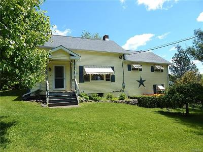 Single Family Home For Sale: 2318 County Route 1