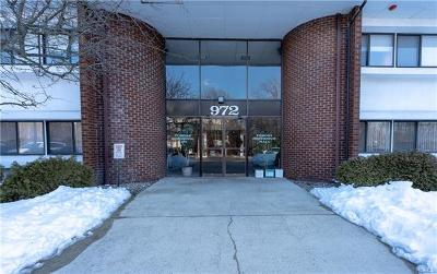 Pomona Commercial For Sale: 972 Route 45