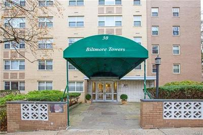 Westchester County Condo/Townhouse For Sale: 30 Lake Street #4I
