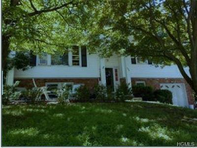 Monroe Single Family Home For Sale: 423 Round Lake Park Road