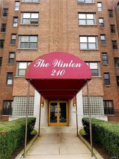 Westchester County Rental For Rent: 210 Martine Avenue #5E