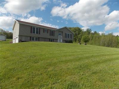 White Sulphur Spring NY Single Family Home For Sale: $240,000