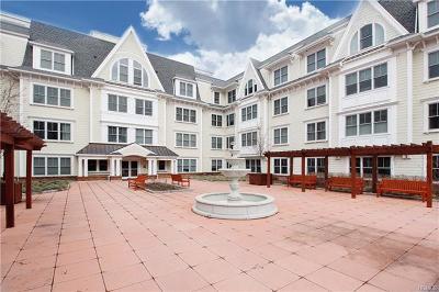 Mamaroneck Rental For Rent: 225 Stanley Avenue #119